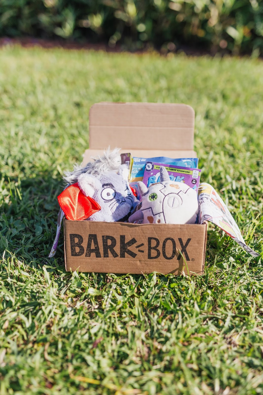 July Barkbox