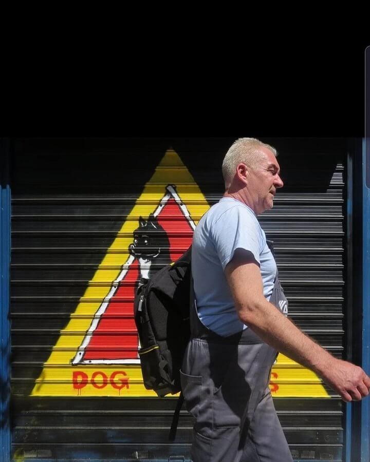 09-Dog-in-a-Rucksack-Anthimos-NtagkasNo-Photos-www-designstack-co