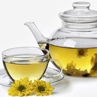 Hamilelikte Krizantem (Kasımpatı) Çayı İçilir mi?