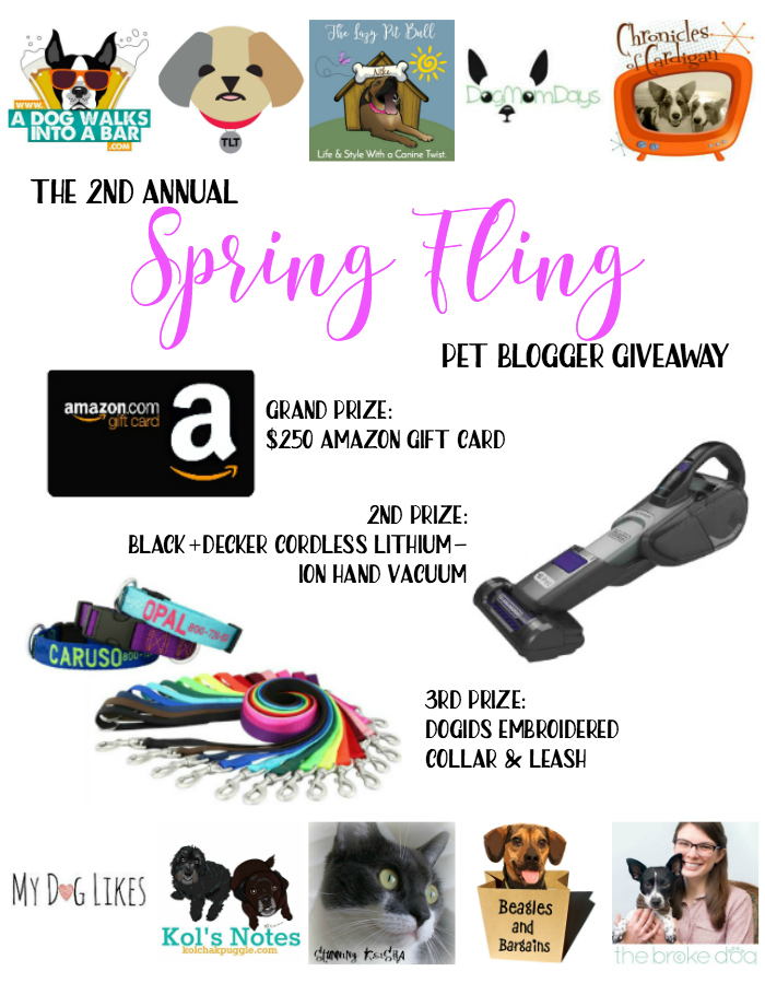Spring Fling Pet Blogger Giveaway graphic with 10 participating blog logos and photos of three prizes