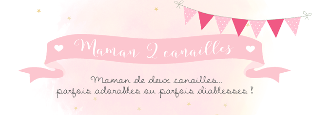 http://www.happiness-moment.fr/2017/01/maman-2-canailles-logo-banniere.html