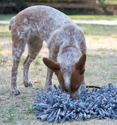 A totally different kind of puzzle toy that looks like a shag carpet