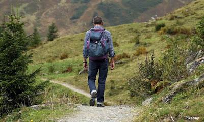 benefícios da natureza, natureza, bem estar, qualidade de vida, saúde, estresses, mente, mente saudável,
