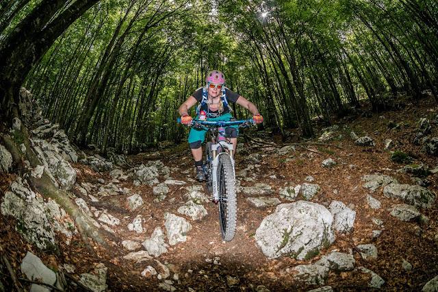 mit diesen mtb mountainbike reifen fährt freeride inc. austria