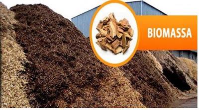 Biomassa sebagai sumber energi - pustakapengetahuan.com