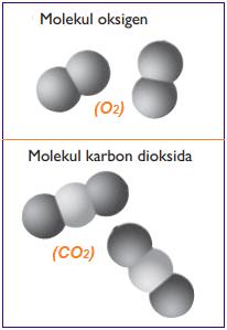 Gambar molekul unsur oksigen dan molekul senyawa karbon dioksida