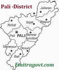 www.emitragovt.com/2016/08/pali-district-emitra-recruitment-apply-online