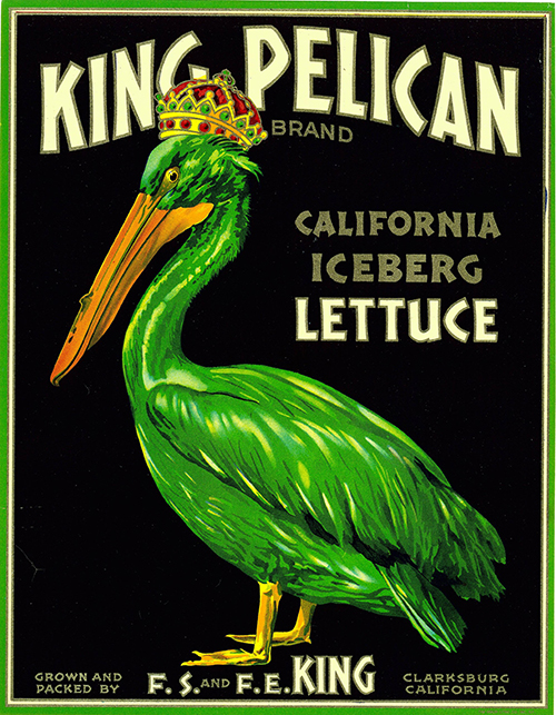 King Pelican California Lettuce - Vintage Produce Ad Poster, advertising, animal poster, classic posters, food, free download, free posters, free printable, graphic design, printables, produce, retro prints, vintage, vintage posters, vintage printables, wildlife