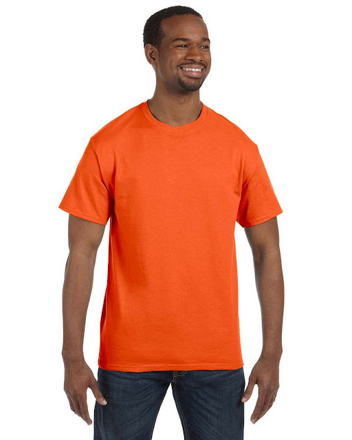 Gildan G5000 100% Cotton Short Sleeve Tee (68 Colors)