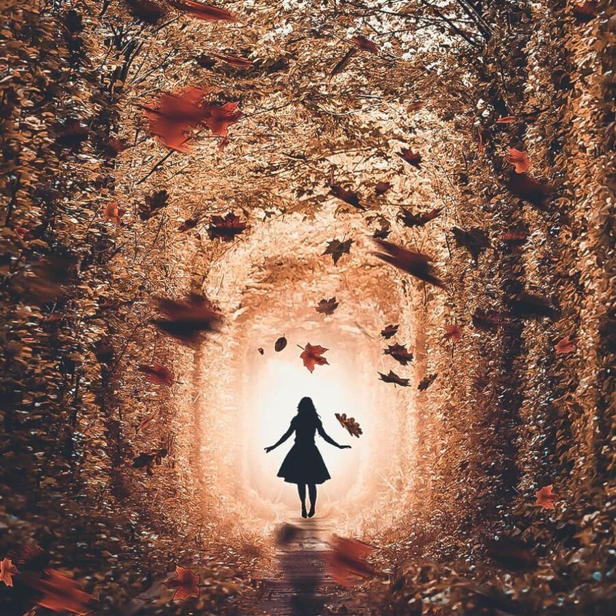 01-The-enchanted-forest-Okan-Ozel-www-designstack-co