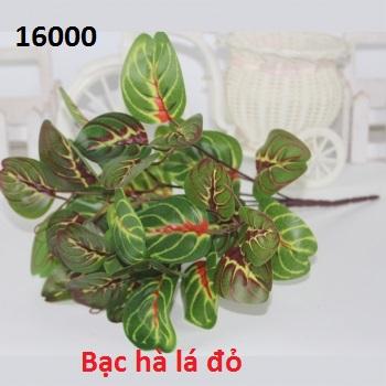 Phu kien hoa pha le o Duong Noi
