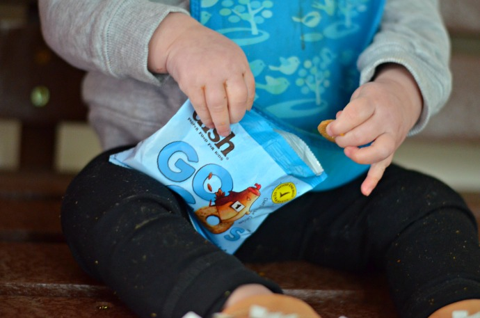little dish gogos, sugar free toddler snacks,