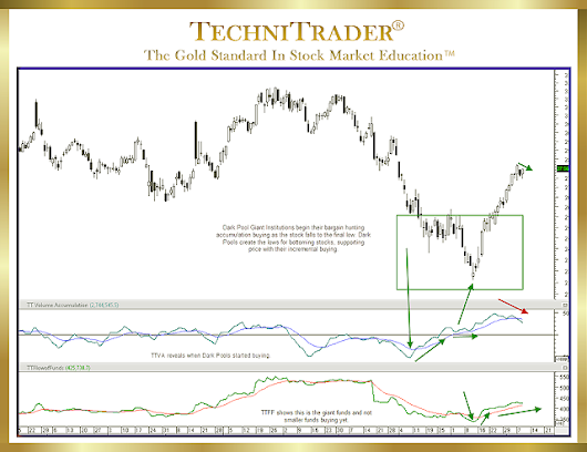 "TechniTrader Education ""Understanding Momentum Run Action"" by Martha Stokes CMT"