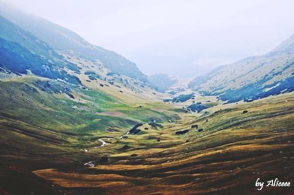 poza-transalpina-peisaje-de-vis