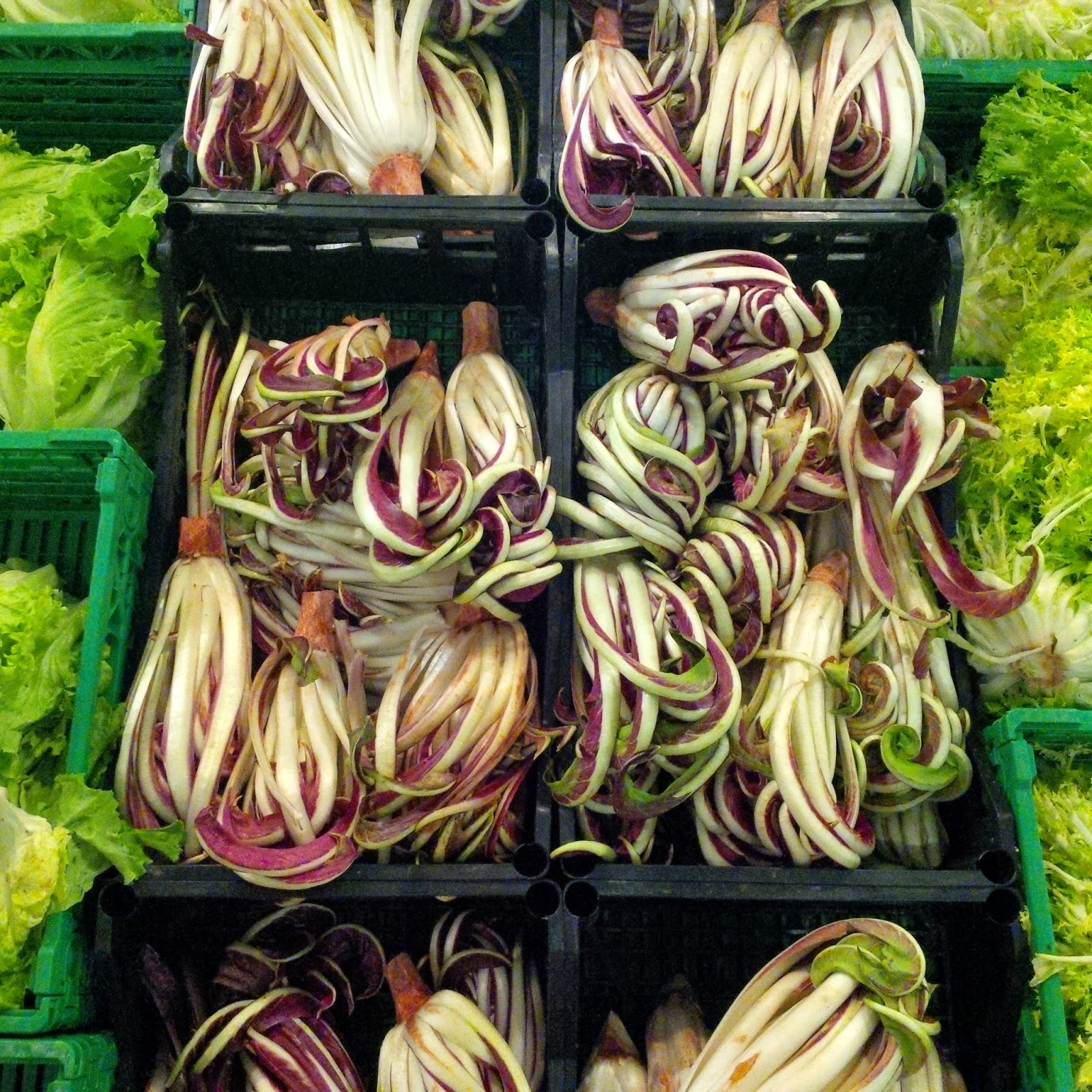 Fancy radicchio in an Italian supermarket