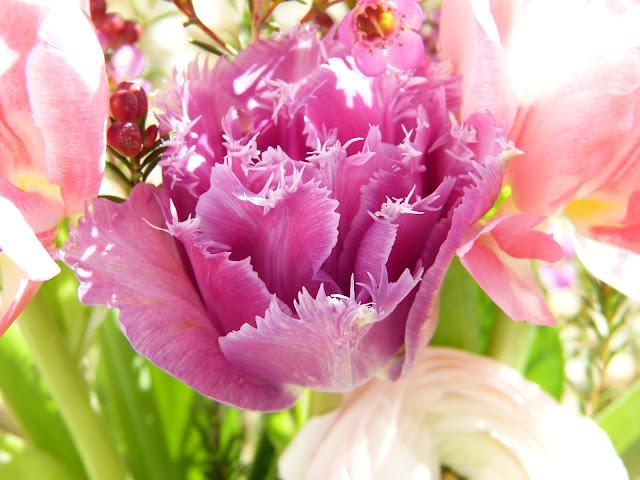 Quelles fleurs pour la Saint-Valentin ?