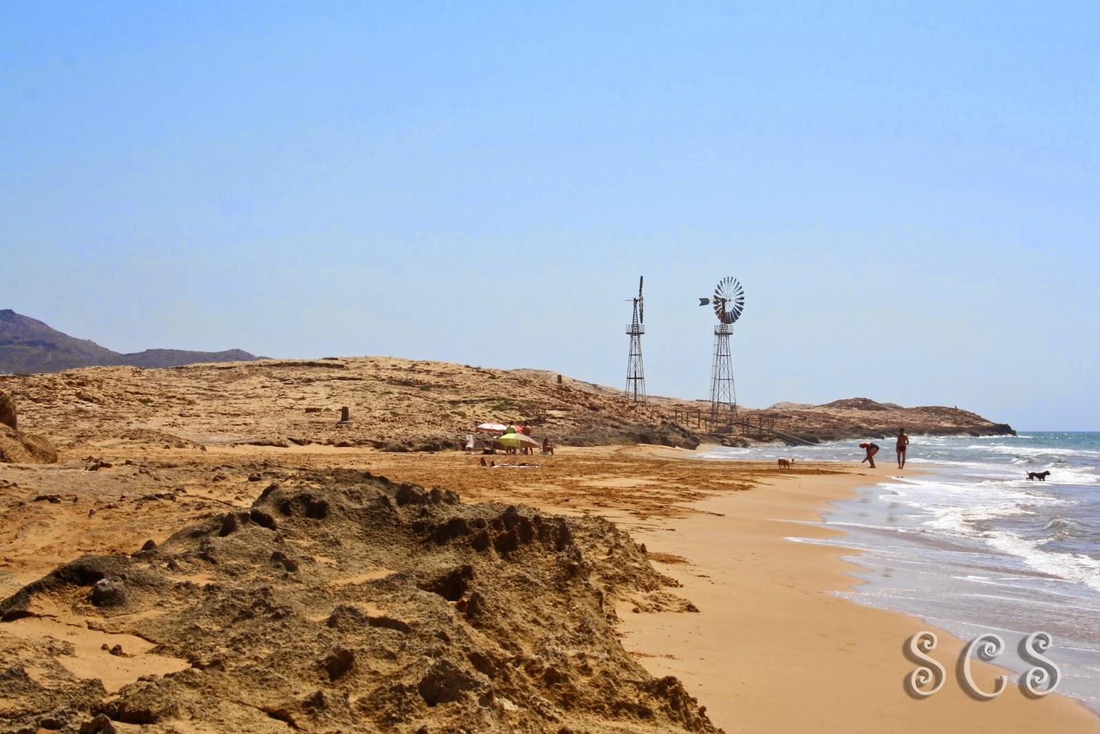 Dunas fósiles y Playa Las Cañas en Calblanque (Murcia)