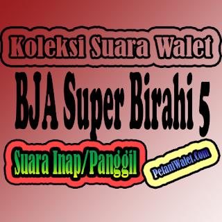 Suara Walet BJA Super Birahi 5