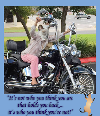 Old Lady riding a Harley