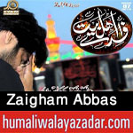 http://www.humaliwalayazadar.com/2016/08/zaigham-abbas-nohay-2010-to-2017.html
