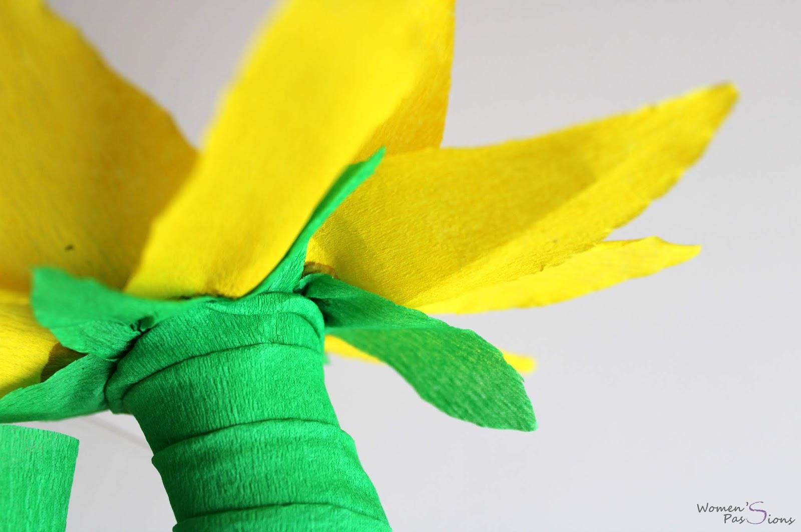 sunnyflower dyi