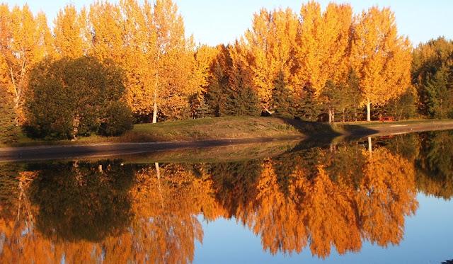 Outono em Edmonton