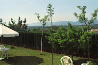 chalet en venta masia gaeta borriol jardin3