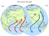 Dünya küreleri üzerinde yazın ve kışın esen muson iklimi rüzgarlarının oklarla gösterimi