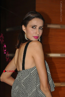 Indian Actress Model Alesia Raut Stills in Sleeveless Long Dress  0011.JPG