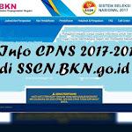 Alur Pendaftaran CPNS di sscn.bkn.go.id 2017-2018