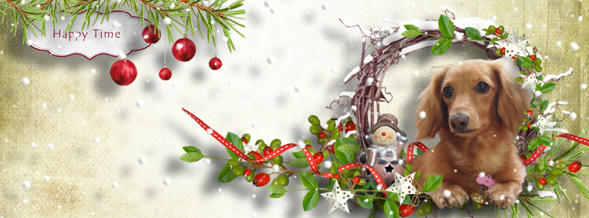 DSB  fb cover Happy Time