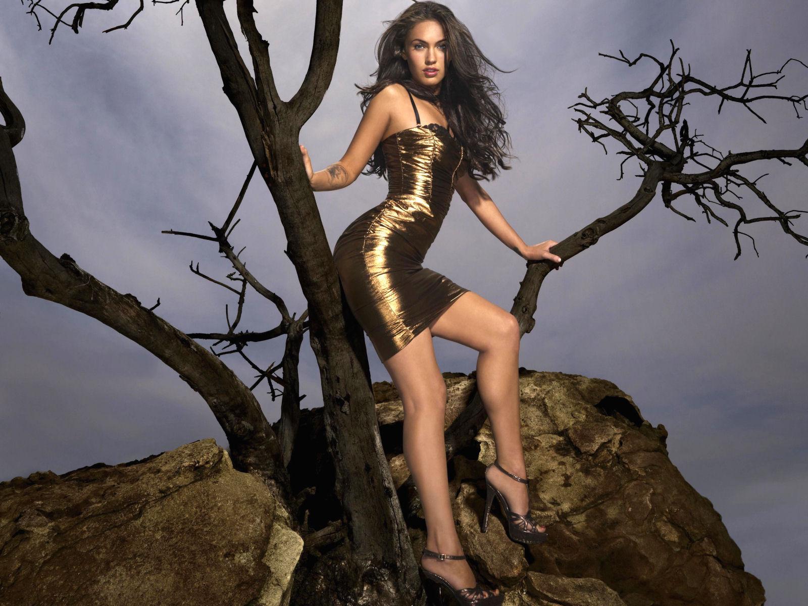 Attractive Wallpapers Of Megan Fox Nude Pic