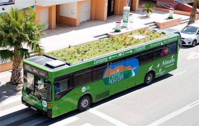 autobuses con cubiertas vegetales
