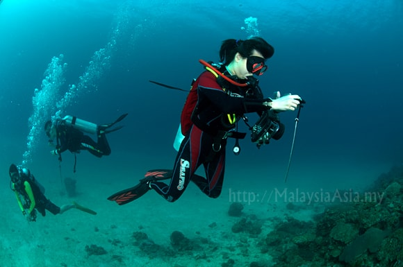 Malaysia best time to scuba dive