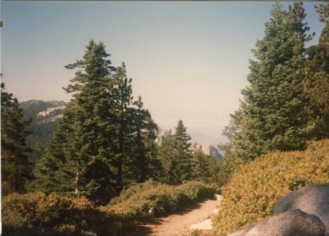 more Fuller Ridge