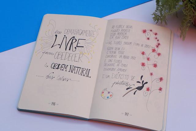 livro-pó-de-lua-resenha-literaria