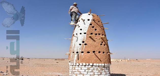 كيفية بناء برج حمام وكيف يبدو من الداخل الخارج