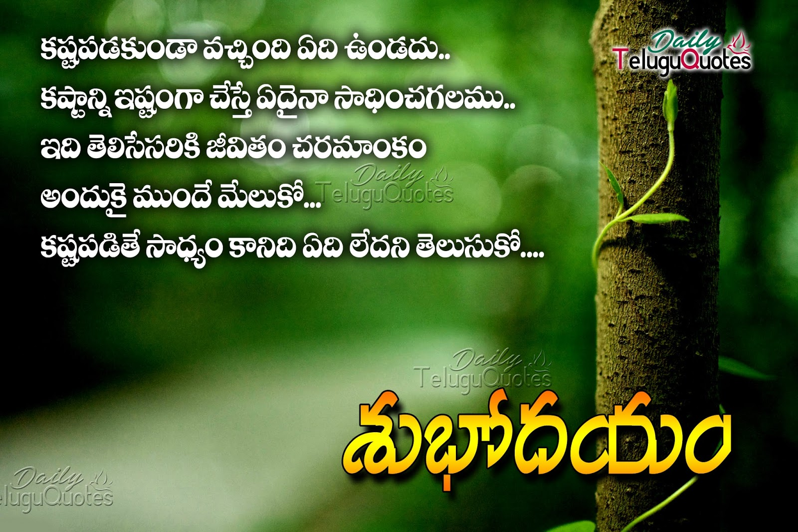 Beautiful Good Morning Quotes In Telugu The Emoji