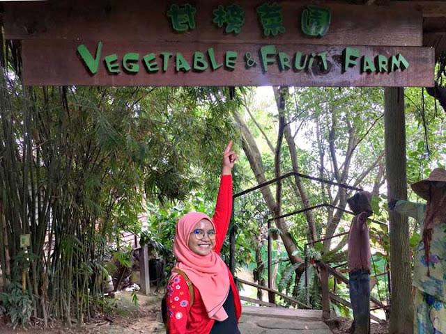 TENGOK DAN BELAJAR MENGENAI HAIWAN - FARM IN THE CITY