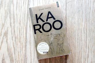 Lundi Librairie : Karoo - Steve Tesich