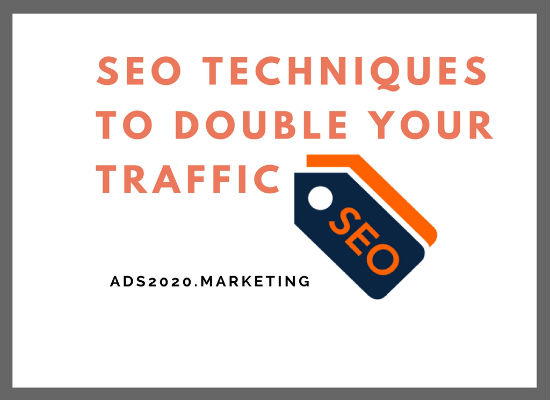 SEO Tips Techniques to Double your Website Traffic-550x400