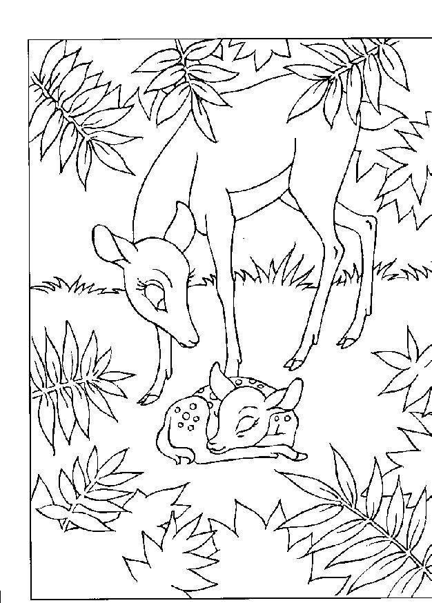 quot desenhos para colorir e imprimir quot desenhos do bambi