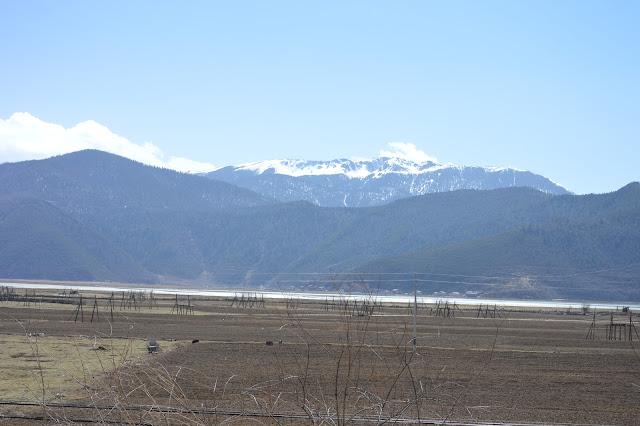Plaines autour du lac Napa