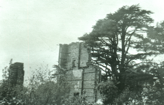 Photogaph of the ruin of Brookmans House after the fire in 1891 Image from the NMLHS, part of the Images Of North Mymms Collection
