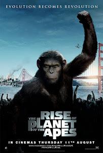 Cuộc Nổi Dậy Của Loài Khỉ