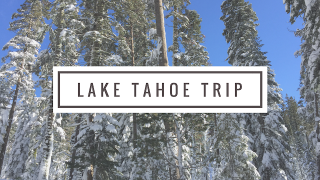 Lake Tahoe Trip Video of our Family playing in the snow