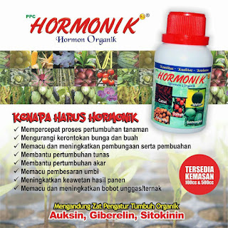http://www.distributorpupuknasa.com/2017/10/hormonik.html