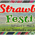 Strawberry Festival 2017
