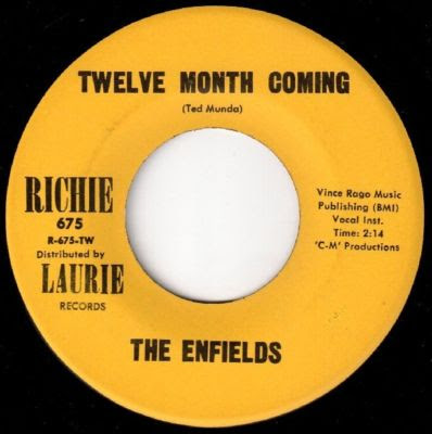 The_Enfields,Friends,garage,psychedelic-rocknroll,ted_munda,Twelve_month_coming,1966