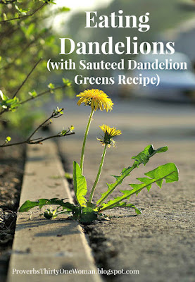 Eating Dandelions...with sauteed dandelion greens recipe